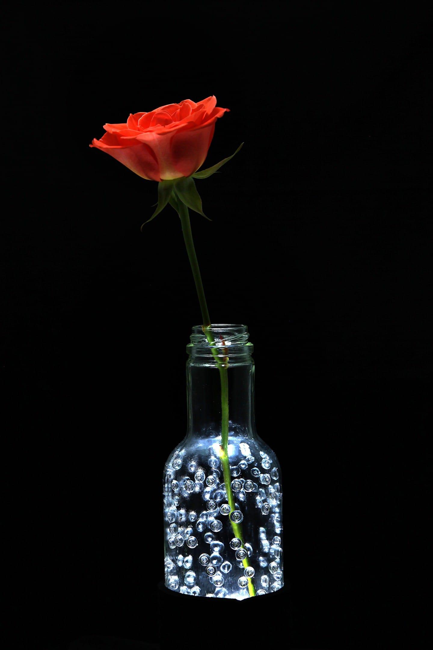 Kreativ Licht, Lampe, Flasche, Licht, Design