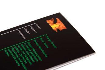 11 Ideen Fotobuch