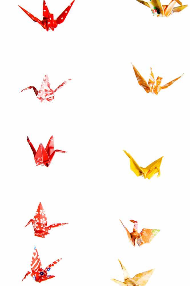 Birdbase Origami