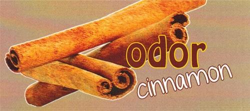 Duftkerze Odoer Cinnamon